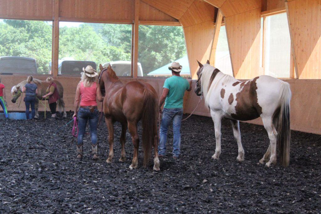 pferbindungswege_anne_preiss_weil-uns-pferde-so-viel-lehren_14